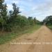 Belize Land 20 Acres near Belmopan Cayo District1