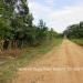 Belize Land 20 Acres near Belmopan Cayo District21