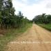 Belize Land 20 Acres near Belmopan Cayo District25