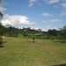 20-acre-farm-near-spanish-lookout-belize-3