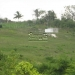 20-acre-farm-near-spanish-lookout-belize-4