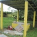 20-acre-farm-near-spanish-lookout-belize-5