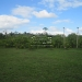 20-acre-farm-near-spanish-lookout-belize-6