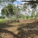 1.34 acres of sloping land in Belize for Sale10