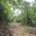 1.34 acres of sloping land in Belize for Sale11