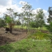 1.34 acres of sloping land in Belize for Sale13