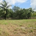 1.34 acres of sloping land in Belize for Sale6