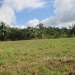 1.34 acres of sloping land in Belize for Sale7