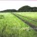 L271011BZ_Belize 72 Acres of Land for Sale7