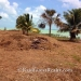 40 Acres with 685 Ft of Oceanfront in Northern Belize8