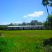 Belize Farm for Sale 1600 Acres citrus and Teak 6