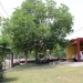 OH031704SI_Home in Maya Vista San Ignacio Belize for Sale63