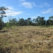 Belize Riverfront property for sale on 1.17 acres6