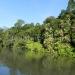 rio-grand-river