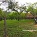 4.2 acres Resort Santa Elena1