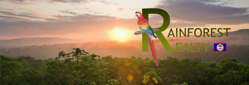 Rainforest Realty of Belize Website Picture