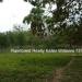 127 Acres with Riverfront20