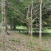 127 Acres with Riverfront22