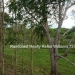 127 Acres with Riverfront24