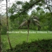 127 Acres with Riverfront26