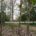 127 Acres with Riverfront29