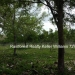 127 Acres with Riverfront35