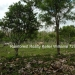 127 Acres with Riverfront36