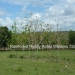 127 Acres with Riverfront49