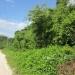 Belize Riverfront Land 169 Acres Western Belize6