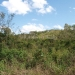 21-73-acres-for-sale-blackman-eddy-5