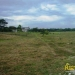 belize-for-sale-25-acres-on-the-river-12