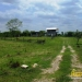 belize-for-sale-25-acres-on-the-river-3