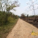 37-acre-farm-in-teakettle-9