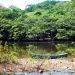 belize-eco-resort-for-sale-canoe