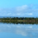 125 Acres with 2 homes Sapodilla Lagoon Belize 5