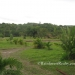 Gaia Way Estate Lots for Sale in Belize3