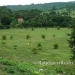 Gaia Way Estate Lots for Sale in Belize6