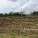 Belize Lot in Santa Familia Cayo District 1
