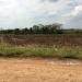 Belize Lot in Santa Familia Cayo District 4