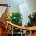 Rental-Cabanas-for-sale-on-Ambergris-Caye-Island123