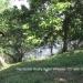 Belize Riverfront home Bullet Tree Cayo District10