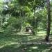 Belize Riverfront home Bullet Tree Cayo District11