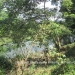 Belize Riverfront home Bullet Tree Cayo District14