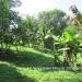 Belize Riverfront home Bullet Tree Cayo District6
