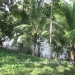 Belize Riverfront home Bullet Tree Cayo District7