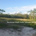 Belize Residential Lots for Sale Bullet Tree2