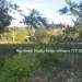 Belize Residential Lots for Sale Bullet Tree7