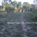 Belize Residential Lots for Sale Bullet Tree8