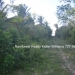 Belize Residential Lots for Sale Bullet Tree9