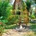 Belize-Resort-Ready-Property-near-San-Ignacio-Town12